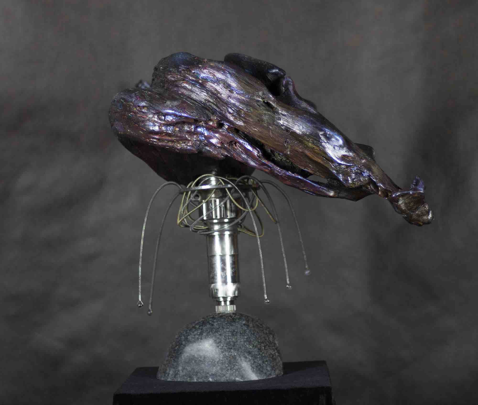 Dreamers Can Fly-Mixed Media Sculpture